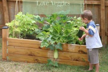 Tips for getting kids to love veggies